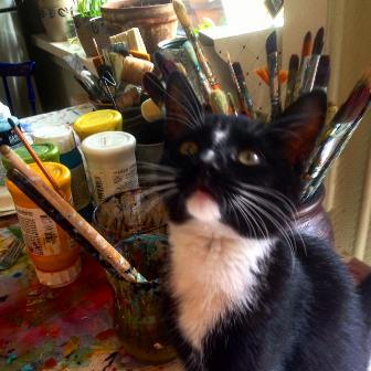 art cat in studio